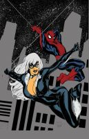 Blackcat and Spidey by grab1