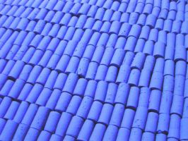 Blue Roof by Evilpainter
