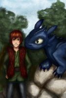 HTTYD: Hiccup and Toothless by lady-largo