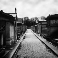 Pere Lachaise by MadameOreille