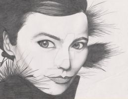 bjork pencil by goblincreations