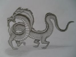 Chinese Dragon, latest. by Glaiceana