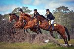 Triple by EquusAustralia