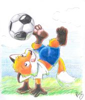 biro plays soccer by pandapaco