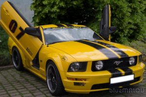 Ford Mustang1 by blueMALOU