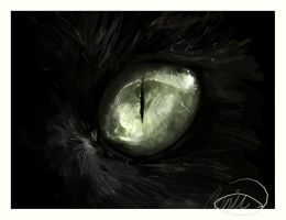 Catseye by howlinghorse