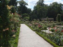 Jardins a la francaise by Cat-in-the-Stock