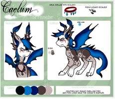Reference :: Caelum the Finnedyr by Hollowed-Chimera