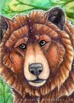 ACEO #343 Grizzly by Beast91