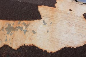 00016 - Rusted White Paint by emstock