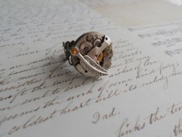 Steampunk mechanical ring with small feather by SteamJo