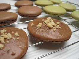 Chocolate-Hazelnut Macarons by pradlee