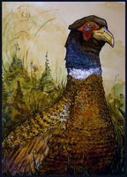 Pheasant by MalthusWolf