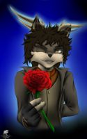 Skyfall - Happy Birthday Anes by Unreal-Forever