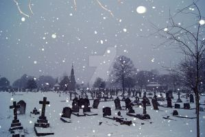 Snow of the deceased by tammoh