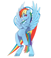 Rainbow Dash by PonyNerior