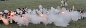 Austerlitz 2011 - French line volley by Siveir