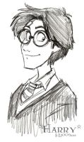 Harry Potter - HP by lberghol