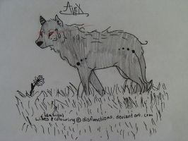 Con. Entry: Alex by disfunctions