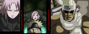 NARUTO 630 VARIOAS PANLES! by eikens