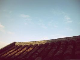 Faifo Impression --rooftops x by Fennecia