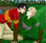 HP: Drarry - Told ya I'd win by cacell