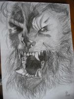 Wolfman (Old drawing) by loudsilence21