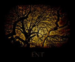 . : The Ent - Alt : . by kharax