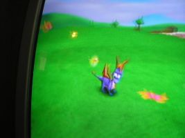 Spyro and a field of by DragonRose08
