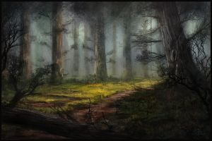 -Forest Illustration- by ChrisDrake1987
