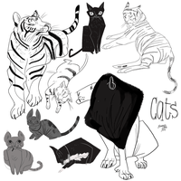 Sketches of Cats and Tigers and Lions by callupish