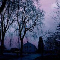 Rosewater's Dusk by LeaHenning
