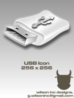 USB Icon by wilsoninc