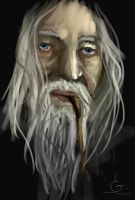 Gandalf Sketch by Miss-Lacy