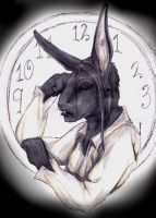 wererabbit DXH portrait by Anarchpeace