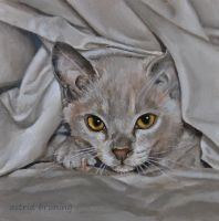 Bed Warmer - Oil Painting by AstridBruning