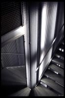 A cage made of Light by sofree