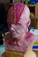 Silicone Zombie Mask by FoxH