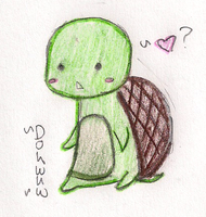 Lil Turtle Turtle: Request by emily-lu