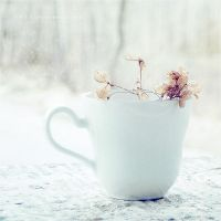 .: mini cup :. by all17