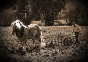 ploughman by UdoChristmann