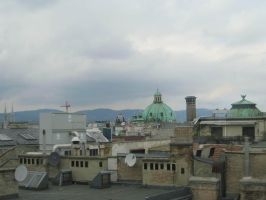 Vienna's Roofs by TiZa