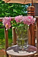 Flower vase HDR by IDR-DoMiNo