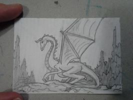 ACEO #9 dragon series by ShelandryStudio