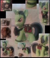 My Little DocDead the Photographer Pony by Z113