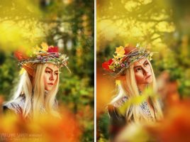 Thranduil Original Cosplay 01 by Megane-Saiko