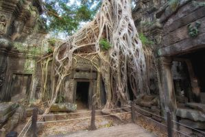 Ta Prohm fenced off by lesterlester