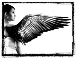 Black Angel by protogeny