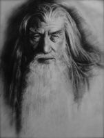 Gandalf the White by Decibell