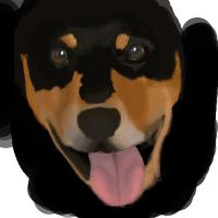 Kat's Dog contest entry WIP by DaggarHeart